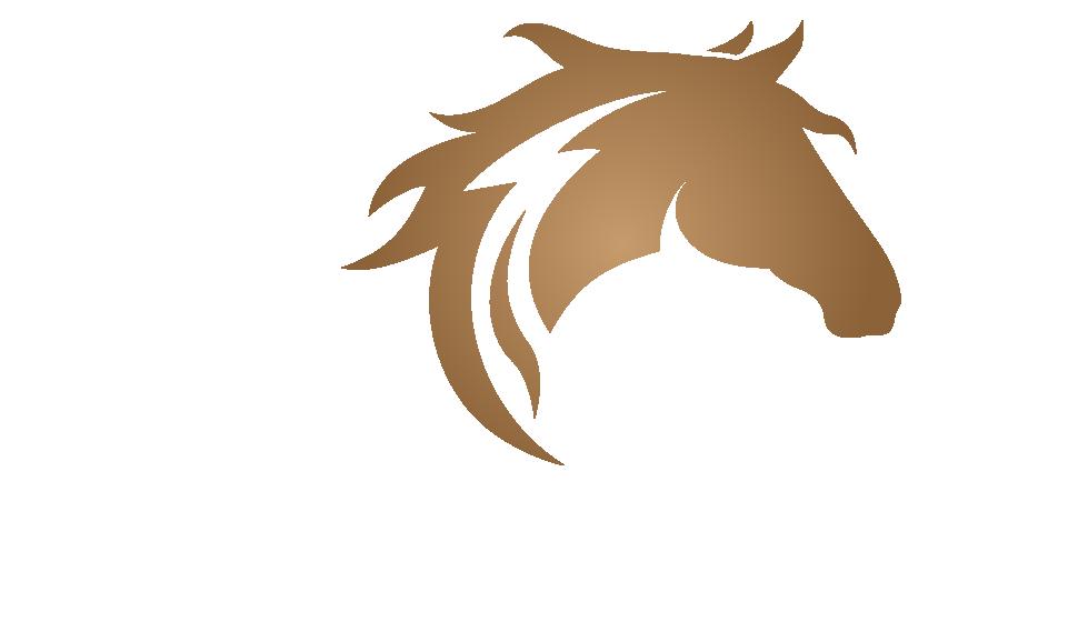 The Cue Club